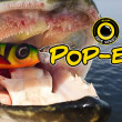 Spro Iris Pop Eye Shad 14 CM